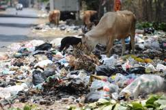 Escombraries