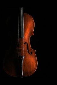 El cos és l'instrument per interpretar la música de la Vida.
